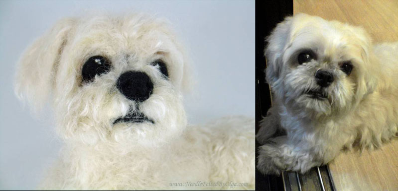 Best Maltese Chubby Adorable Dog - chubby-shih-tzu-custom-needle-felted-and-real  Snapshot_782482  .jpg