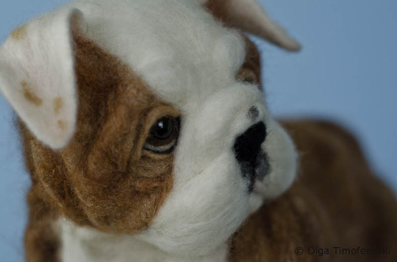 English Bulldog Puppy OOAK Needle Felted Dog Figurine Toby Award