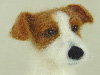 Needle felted figurine of Casper ther Jack Russell terrier