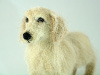 Golden Retriever, needle felted (click for more)