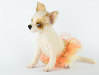 Figurine of Rosie the Chihuahua, handcrafted of wool